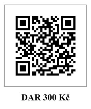 dar_300